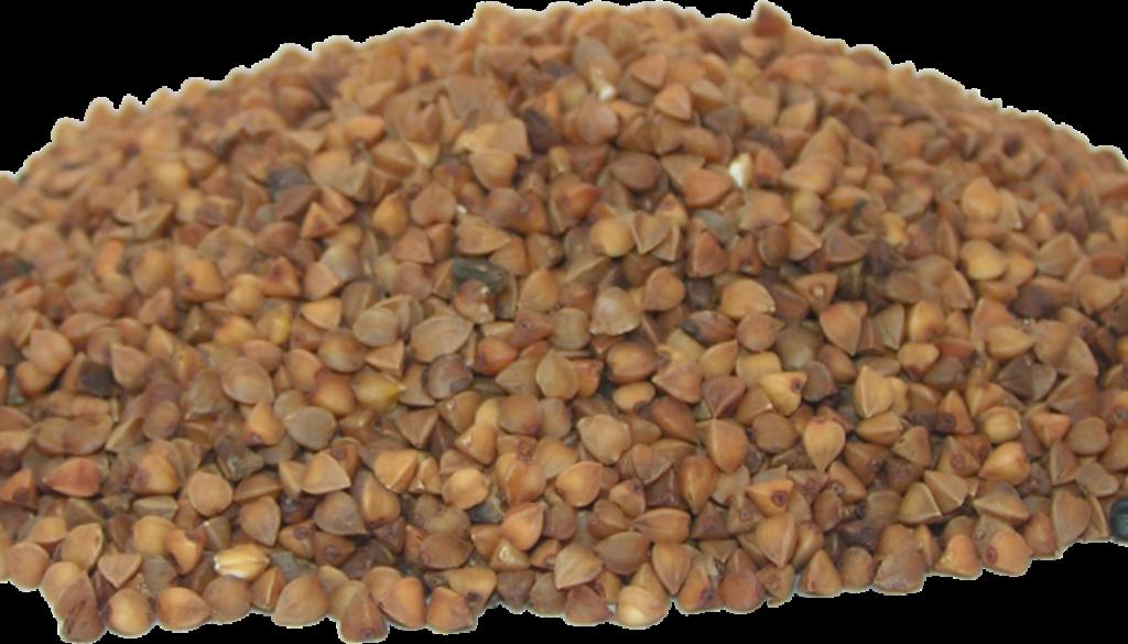 buckwheat-2201206_1920